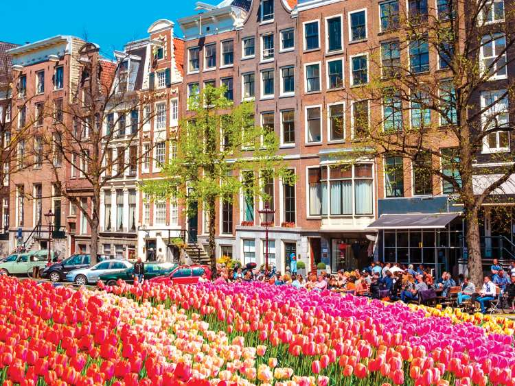 discover holland with costa cruises