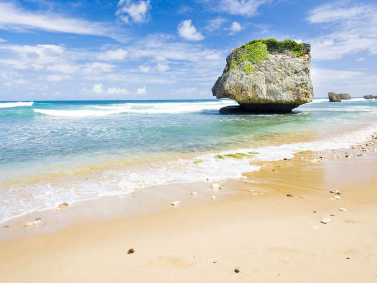 The beautiful beach of Barbados on a Costa Cruise