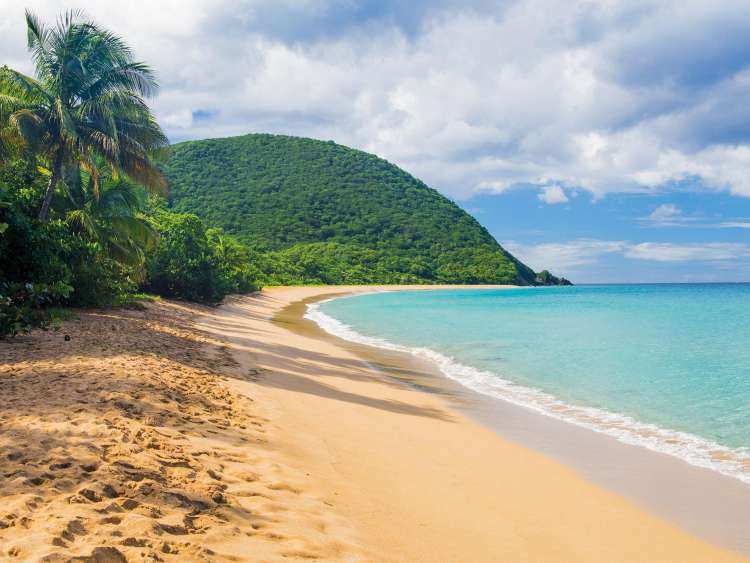 The Caribbean beach of Guadeloupe on a Costa Cruise